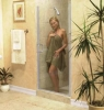 Shower Door SC125